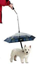 petumbrella.jpeg