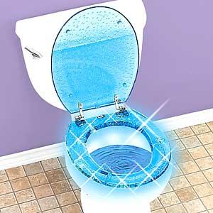 toiletseat.jpg