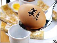 eggabody.jpeg