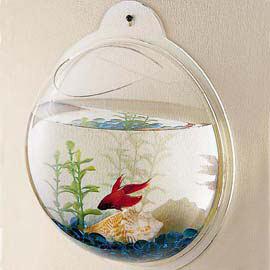fishbowllg.jpg