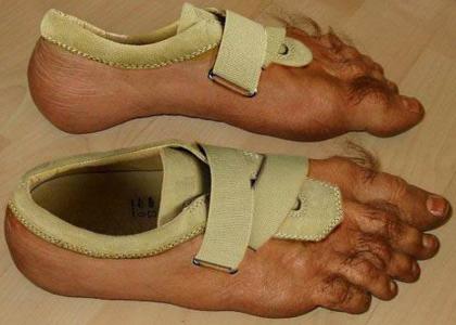 footshoe2.jpg