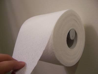 toilet-paper-over.jpg