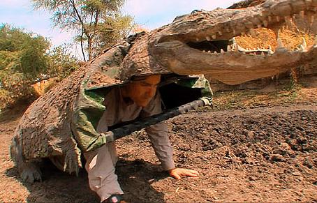 crocdisguse1.jpg