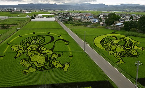 rice_art2.jpeg