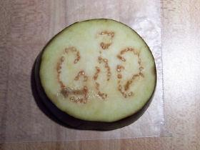 081207-eggplant-god-280.jpeg