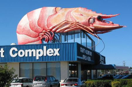 giantshrimps2.jpg