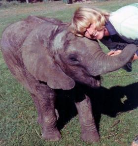 elephant_baby_mary_124.jpg