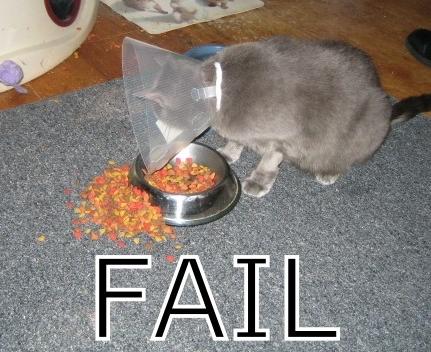 failblogpicfa.jpg